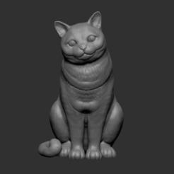 Download 3D printer designs British Shorthair cat sitting, ToXiDoKu