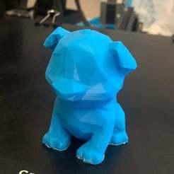 IMG_6311.JPG Télécharger fichier STL gratuit chien de test à faible poly endurance 3 • Modèle imprimable en 3D, sulayman_chaudhry