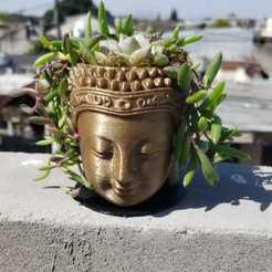 IMG-20200922-WA0031[1].jpg Download free STL file Buddha pot • 3D print object, martin_dupu