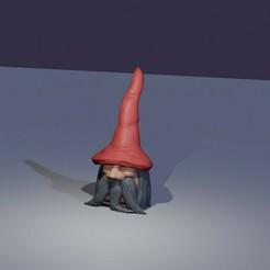 Gnome_Title_small.jpg Télécharger fichier STL Le magicien gnome • Design pour impression 3D, marioschmid