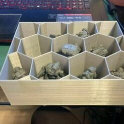 Carrying_Tray_L.jpg Download free STL file Minis Hex Tray • 3D print design, PaleAle