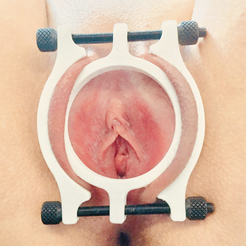 Download free 3D printing files PUSSY CLAMP WIDE, thecuddlesdom