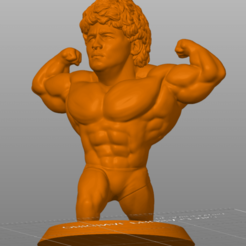 Diego3.png Download STL file DIEGO MARADONA 10 DI0S  • 3D printer object, 3Dimension3d