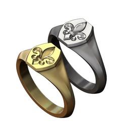 lys-hexa-signet-00.JPG Download 3MF file Hexagonal Heraldic lily signet ring 3D print model • 3D printable design, RachidSW