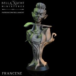 Screen Shot 2020-12-11 at 10.33.20 PM.png Télécharger fichier STL Francene Bust • Modèle pour impression 3D, BellaNachtMiniatures