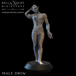 Screen Shot 2020-12-11 at 10.15.49 PM.png Download STL file Male Drow - 2 Versions • 3D print object, BellaNachtMiniatures