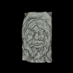 piedra1_1.PNG Télécharger fichier STL gratuit face in stone 1 - Cara en piedra 1 • Objet pour imprimante 3D, spalominominis