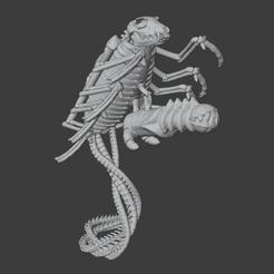 BonecronCanopticWraithReady.png Télécharger fichier OBJ Le Wraith canoptique de Bonecron • Plan pour impression 3D, Foxwarrior