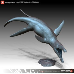 Download 3D model LIOPLEURODON, PREYcollectionSTUDIO