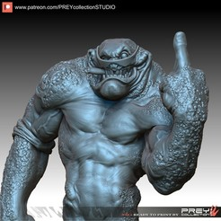 Download 3D printer designs RASH BATTLETOAD 1-10 SCALE, PREYcollectionSTUDIO