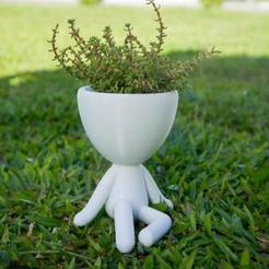 WhatsApp Image 2019-02-25 at 20.05.32_large.jpeg Download free STL file Robert Plant Pot • Model to 3D print, rominaleonela1