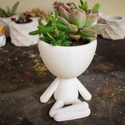 robert indio.jpg Télécharger fichier STL Pot de plantes Robert • Modèle pour imprimante 3D, rominaleonela1