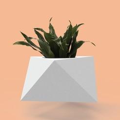 octa-01.jpg Télécharger fichier STL Moule pour planteuse à béton • Plan à imprimer en 3D, joaquinpicci