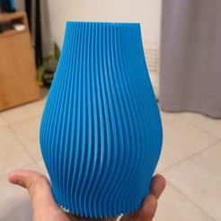 20200806_212340.jpg Descargar archivo STL Florero Rizo • Objeto para impresora 3D, sebamazza
