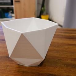 20200806_213148.jpg Descargar archivo STL Florero Geometrico • Diseño para imprimir en 3D, sebamazza