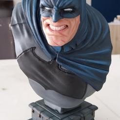 Descargar archivo STL gratis El busto del Caballero Oscuro (fan art) • Modelo para la impresión en 3D, malliamatthew