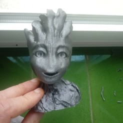 20200829_095145.jpg Download OBJ file I'm Groot. • 3D printing model, jorgeps4