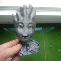 20200829_095145.jpg Télécharger fichier OBJ Je m'appelle Groot. • Objet à imprimer en 3D, jorgeps4