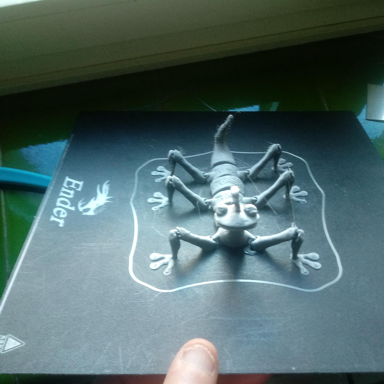 20201226_152927.jpg Download OBJ file Randall Boggs fleximodel • Design to 3D print, jorgeps4