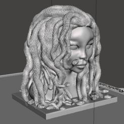 medusafin5 (2).png Télécharger fichier OBJ La Méduse moderne. • Objet à imprimer en 3D, jorgeps4