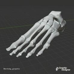 Piede 2.jpg Télécharger fichier OBJ Pied anatomique • Design imprimable en 3D, Erikdg_graphic