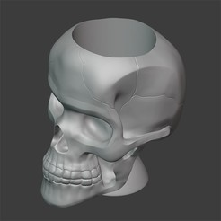 IMAGEN1.jpg Download STL file POTTED SKULL • 3D printer template, Carlostfe1972