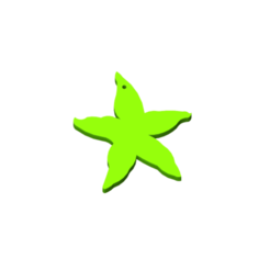 Estrella_de_mar_Verde-removebg-preview.png Download free STL file Starfish keychain. • 3D printable object, milproductos3d