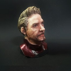 1.jpg Download OBJ file TONY STARK HEAD MODEL • 3D printable object, figuremasteracademy