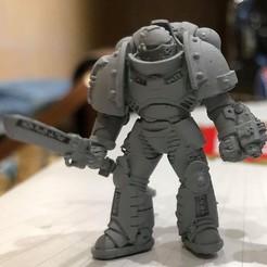 Télécharger fichier imprimante 3D gratuit L'équipe des Chevaliers gris Primaris, joeldawson93