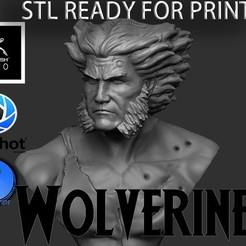 001.jpg Download STL file WOLVERINE STL FAN ART • 3D printing model, SCULPSTATION
