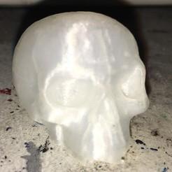 IMG_5075~photo-full.jpg Télécharger fichier GCODE crâne petit • Modèle à imprimer en 3D, firewalker75