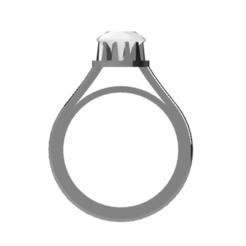 2.PNG Download OBJ file Ring • 3D print model, Nahskaved