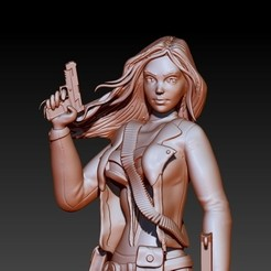 Download 3D printing models LADY PUNISHER - LYNN MICHAELS, ALTRESDE