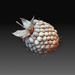 Raspberry.jpg Download OBJ file Raspberry • Template to 3D print, tex123