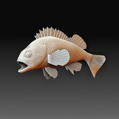 Rockfish.jpg Télécharger fichier OBJ Poisson perche • Modèle imprimable en 3D, tex123