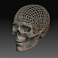Wire skull.jpg Download OBJ file Wire skull • Template to 3D print, tex123