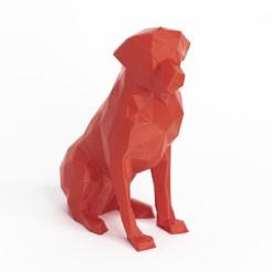 Télécharger fichier impression 3D low poly dog labrador, daesco