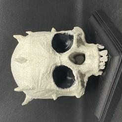 Descargar archivo STL gratis Cráneo de Darth-Maul • Modelo para imprimir en 3D, aporcelli26