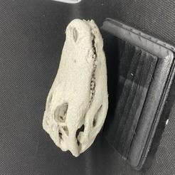 Descargar archivo STL gratis Cráneo del cocodrilo • Objeto imprimible en 3D, aporcelli26