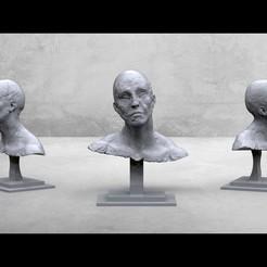 untitled.126.jpg Download STL file creative portrait • 3D printable design, kx_sculptor