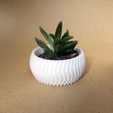 Download free 3D printer templates Cactus Planter 2 - small, Prigle