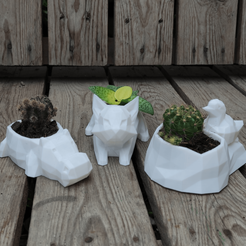 IMG_20201028_143555.png Download STL file low poly animal pot planter (cat, hippo, nest bird) • 3D printable template, Prigle