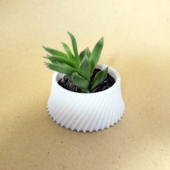 Download free 3D printing templates Cactus Planter 1 - small, Prigle