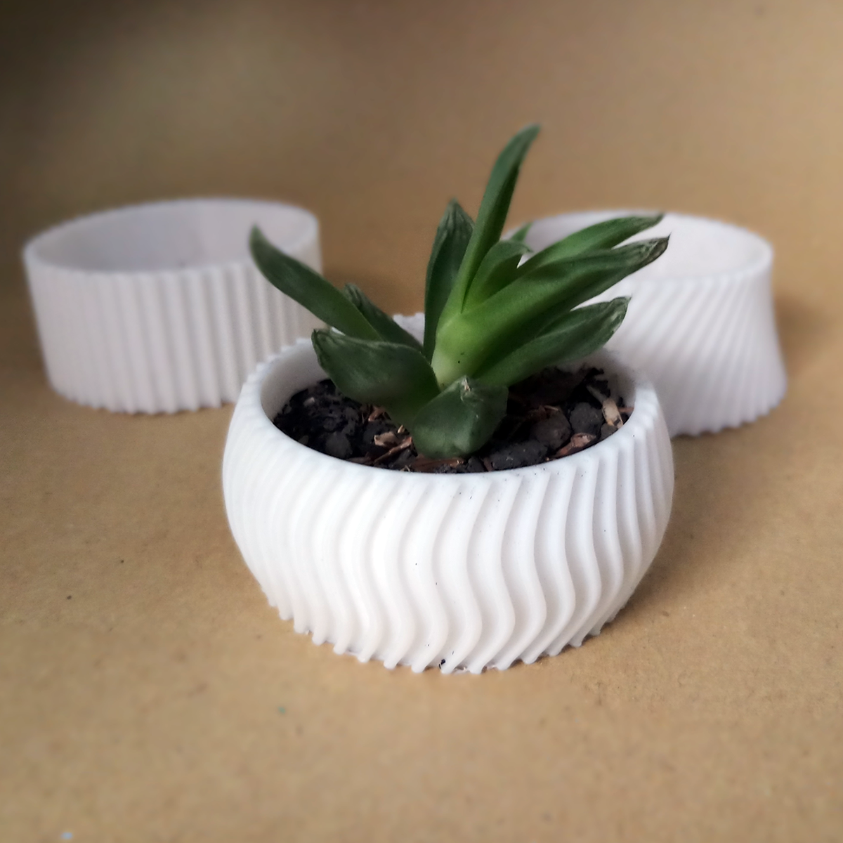 20200726_163354.png Download free STL file Cactus Planter 2 - small • 3D printing object, Prigle