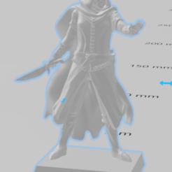 rouge elf.PNG Télécharger fichier STL gratuit D et D demi-elfe • Plan pour imprimante 3D, Dillon1710