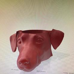 Impresiones 3D mate perro salchicha, IMPRESION3DCORDOBAA