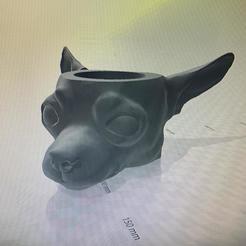 Descargar archivos 3D mate perro chihuahua, IMPRESION3DCORDOBAA