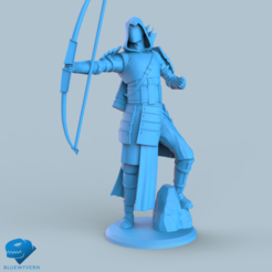 Download STL files Human Samurai Ranger unit 2#, BLUEWYVERN