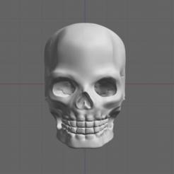 Download STL file Skull, thomasactis