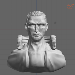 1.png Download free STL file V Bust Cyberpunk 2077 • 3D printer template, thomasactis